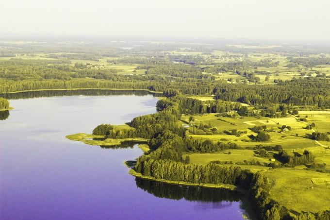 domena publiczna, https://pixabay.com/pl/pi%C4%99kny-natura-europa-litwa-zielony-1236161/